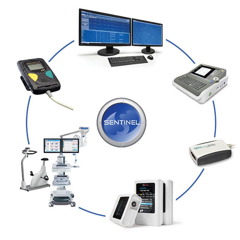 Bezpieczeństwo cyfrowe systemu Sentinel