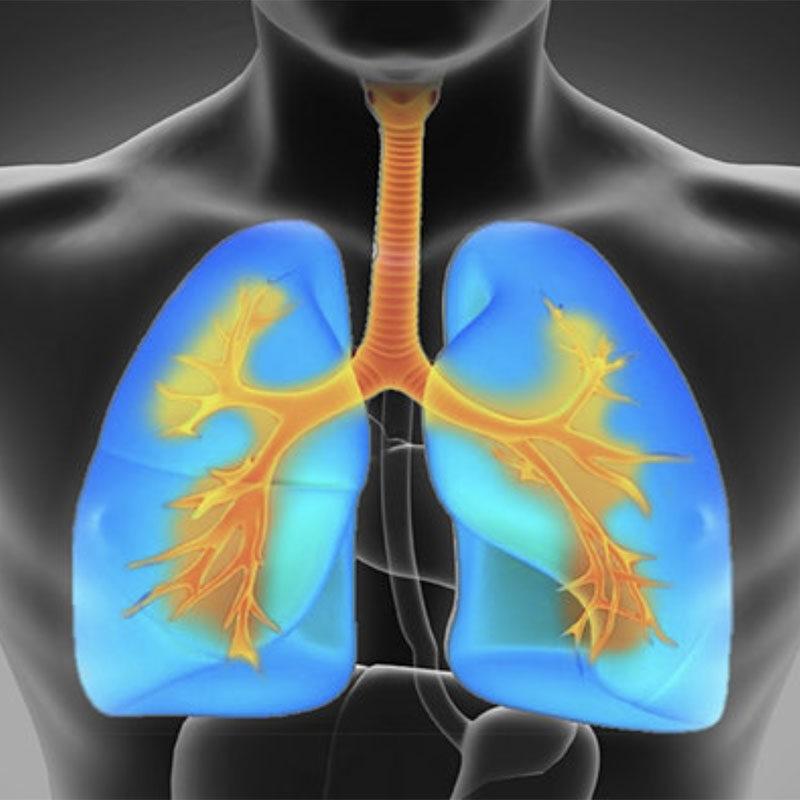 Zaproszenie na webinar sponsorowany przez firmę THORASYS Thoracic Medical Systems